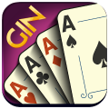 Gin Rummy - Offline Free Card Games Game