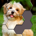 Hexa Jigsaw Puzzle™ Game